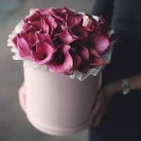 29 розовых калл в нежной коробке R739