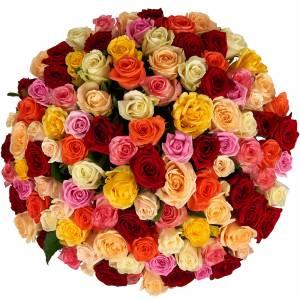 Букет из 101 разноцветной розы R113