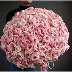 Букет 101 розовая пионовидная роза Пинк Охара R1972