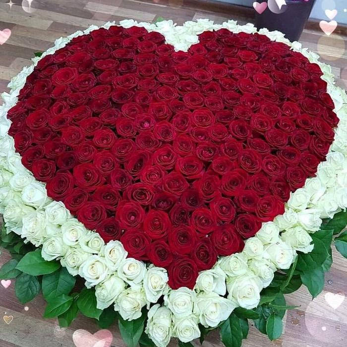 501 роза в форме сердца в корзине R928