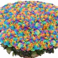 501 радужная роза в корзине R933