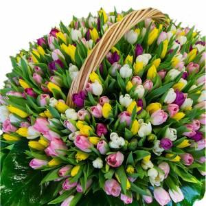 1001 разноцветный тюльпан в корзине R993
