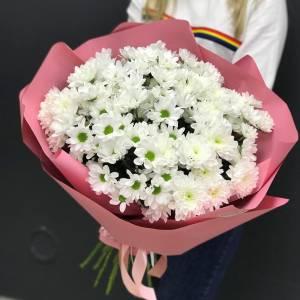 15 веток белой ромашковой хризантемы R1125
