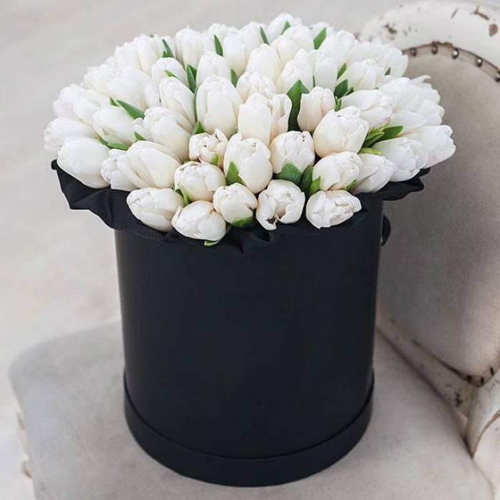 51 белый тюльпан в черной коробке R007