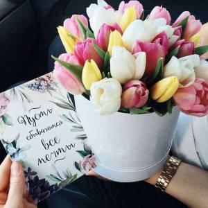 19 розовых тюльпанов в коробке R416
