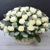 Корзина 39 крупных белых роз с зеленью R015