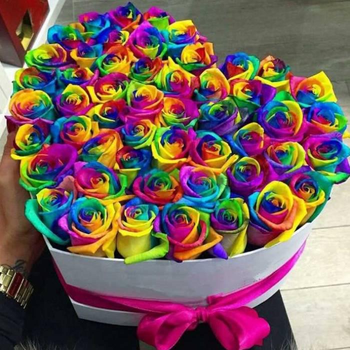 51 радужная роза сердце R013